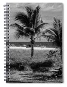 Palm Beach Road Trip Spiral Notebook