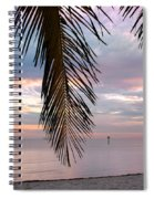 Palm Courtain II Spiral Notebook