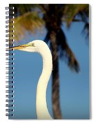 Palm Egret Spiral Notebook