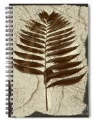 Palm Fossil Sandstone  Spiral Notebook