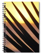 Palm Frond Detail Spiral Notebook