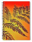 Palm Frond In The Summer Heat Spiral Notebook