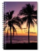 Palm Horizons Spiral Notebook