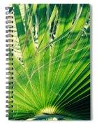 Palm House Branch Spiral Notebook