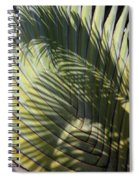 Palm On Palm Spiral Notebook