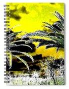Palm Paradise   Spiral Notebook