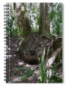 Palm Roots Spiral Notebook