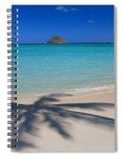 Palm Shadows Spiral Notebook