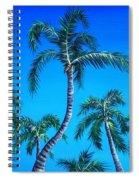 Palm Tops Spiral Notebook