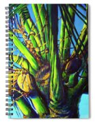 Palm Tree At Sunset Spiral Notebook