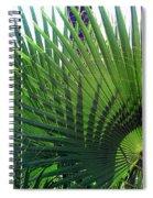 Palm Tree, Big Leafs Spiral Notebook