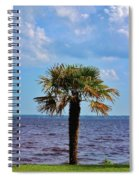 Palm Tree By The Lake Spiral Notebook