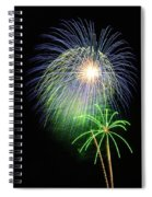Palm Tree Fireworks Spiral Notebook