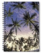 Palm Tree Grove Spiral Notebook