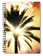 Palm Tree In The Sun #2 Spiral Notebook
