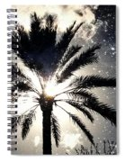 Palm Tree In The Sun #3 Spiral Notebook