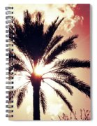 Palm Tree In The Sun Spiral Notebook