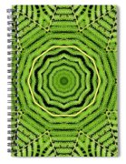 Palm Tree Kaleidoscope Abstract Spiral Notebook