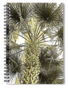 Palm Tree Pen And Ink Grayscale With Sepia Tones Spiral Notebook