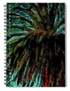 Palm Trees 40 Version 2 Spiral Notebook