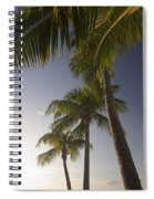 Palm Trees At Sunset Spiral Notebook