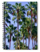 Palm Trees. California, Sunny Beauty Spiral Notebook