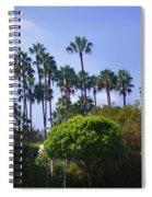 Palm Trees. My Beautiful California Spiral Notebook