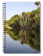 Palm Trees Reflections Spiral Notebook