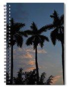 Palmeras Ahuachapan Spiral Notebook