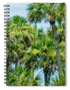 Palmetto Palm Trees In Sub Tropical Climate Of Usa Spiral Notebook