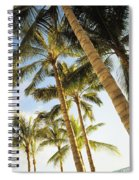 Palms Against Blue Sky Spiral Notebook
