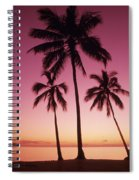 Palms Against Pink Sunset Spiral Notebook