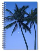 Palms And Blue Sky Spiral Notebook