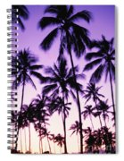 Palms And Purple Sky Spiral Notebook