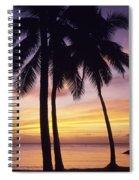 Palms And Sunset Sky Spiral Notebook