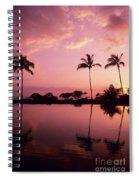 Palms At Still Lagoon Spiral Notebook