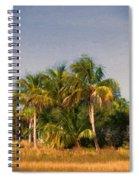 Palms - Naples Florida Spiral Notebook