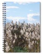 Pampas Grass Spiral Notebook