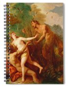Pan And Syrinx Spiral Notebook