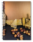 Pan Flutes And Buckeyes Spiral Notebook