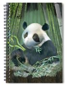 Panda Love Spiral Notebook
