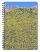Panoramic View Of Desert Gold Yellow Spiral Notebook