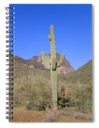 Panoramic View Of Springtime Spiral Notebook