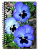 Pansies 0823 Spiral Notebook