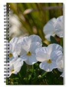 Pansies 15-02 Spiral Notebook