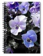 Violas Ocean Dream Spiral Notebook