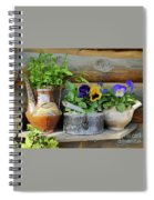 Pansies In Pots Spiral Notebook