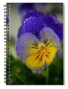 Pansy 0002 Spiral Notebook