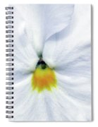 Pansy 03 - Thoughts Of You Spiral Notebook