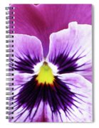 Pansy 07 - Thoughts Of You Spiral Notebook
